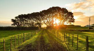 Beautiful-countryside-landscape-at-sunset